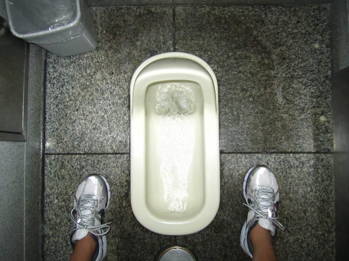 Wandering Hokies: How To Use The Bathroom In Japan